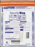Single Pocket Money Handling Bag Clear Small 9 x 12
